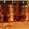 Эффективный бизнес на пиве: пивной мини завод