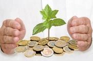 Зачем нужен стабильный источник доходов
